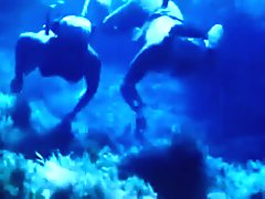 Classic Japanese Amah Underwater
